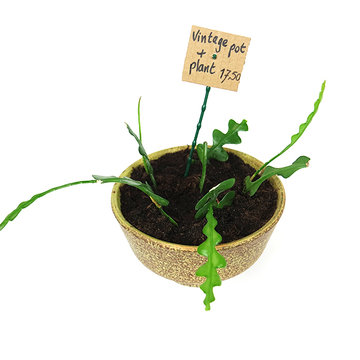 Vintage pot met plant