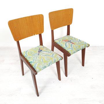 Vintage stoelen, vogelstof