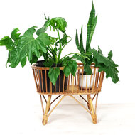 Vintage plantenbak